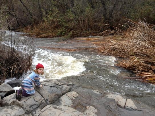 CH at stream edge